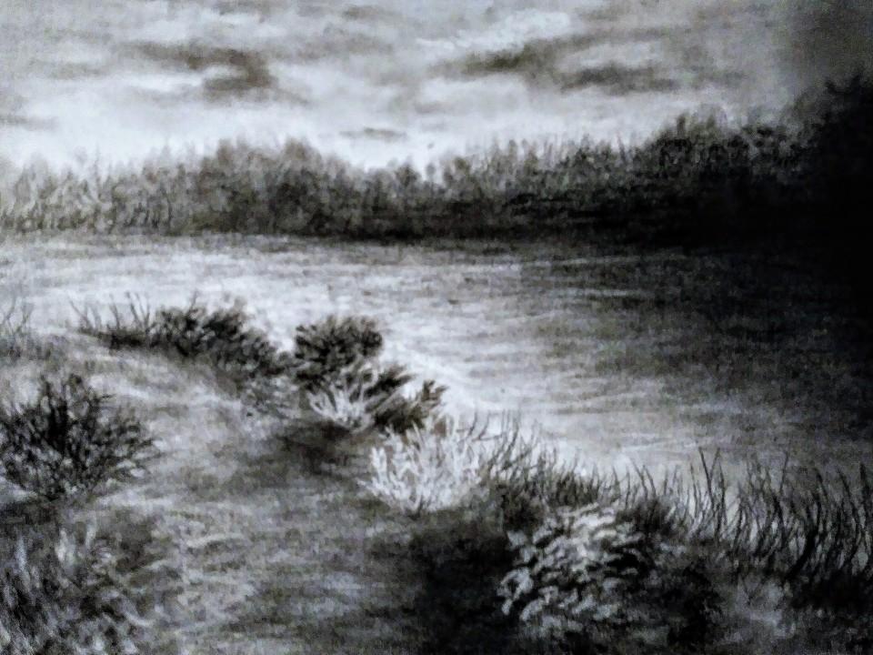 charcoal landscape tripplet park.jpg