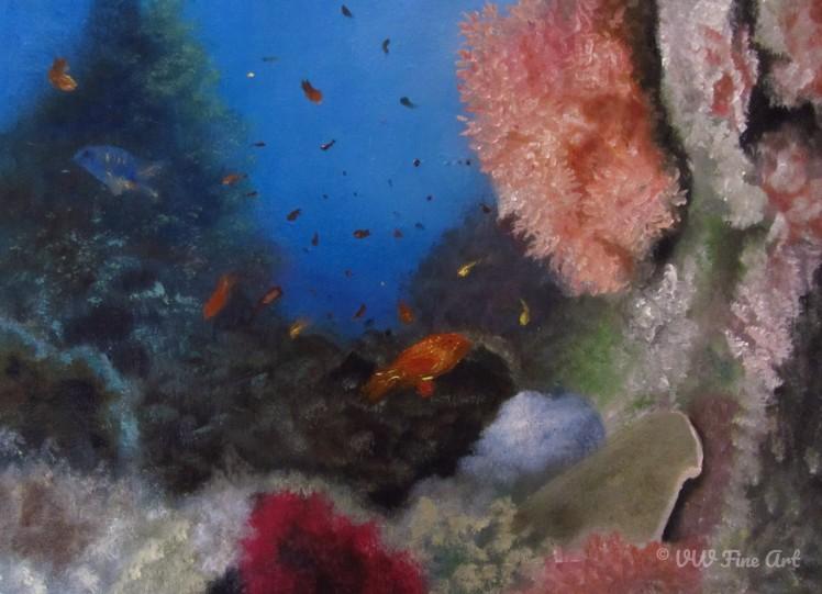 Under the Sea Website watermarked.jpg
