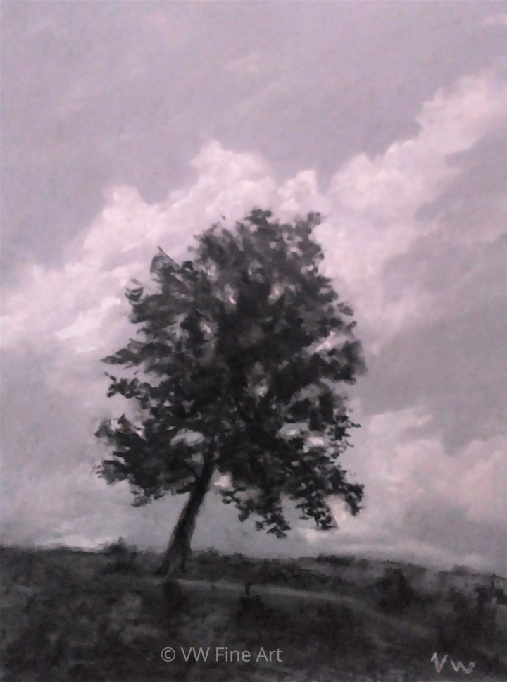 Tree study June 12 watermark.jpg